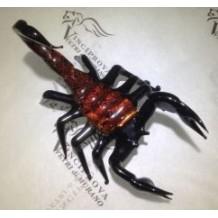 Scorpione Ametista in vetro di Murano made in italy